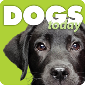 Dogs Today Magazine app review