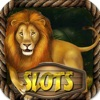 The Book Discovery on Wild Epic Jungle - Lucky Tiger King Casino Slots Way to Win on Super Las Vegas!