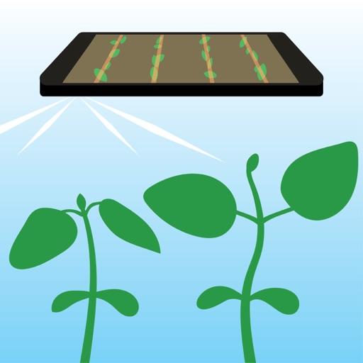Bean Cam - Wisconsin's Soybean Replant Calculator iOS App