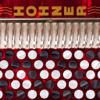 Hohner Chromatic SqueezeBox Accordion Pro