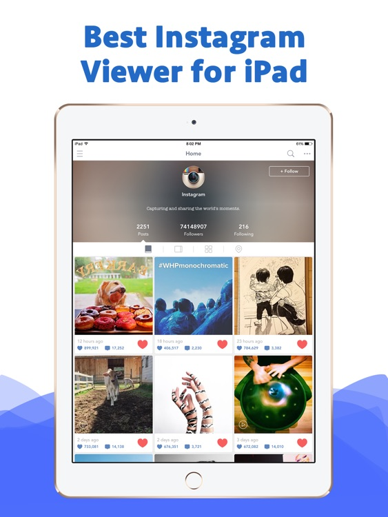 Padview for Instagram - former Padgram on iPad by Minlong Shi