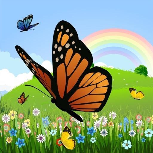 Dibujos Para Colorear Mariposa Páginas Para Colorear