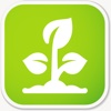 Plant Dictionary - All Information About A - Z Common Species Of Plant plant lover gifts