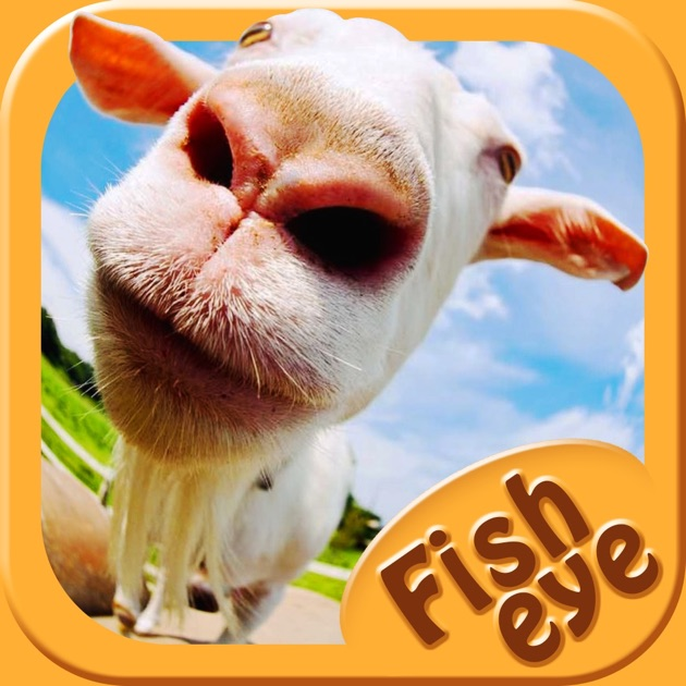 Fish eye camera selfie photo editor with lens color for Fish eye effect