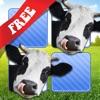 Kostenloses Memo Spiel Bauernhoftiere Foto
