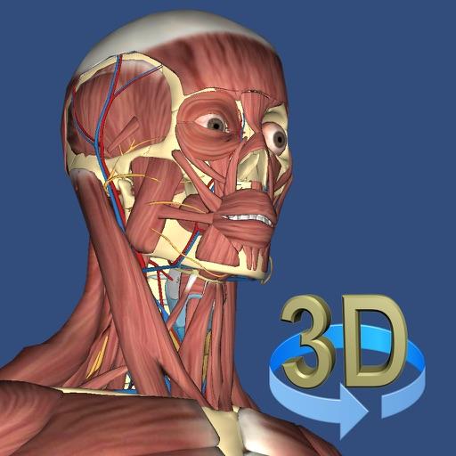 3D 解剖学:3D Anatomy