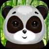 Asian Panda Saving Puzzle 3D
