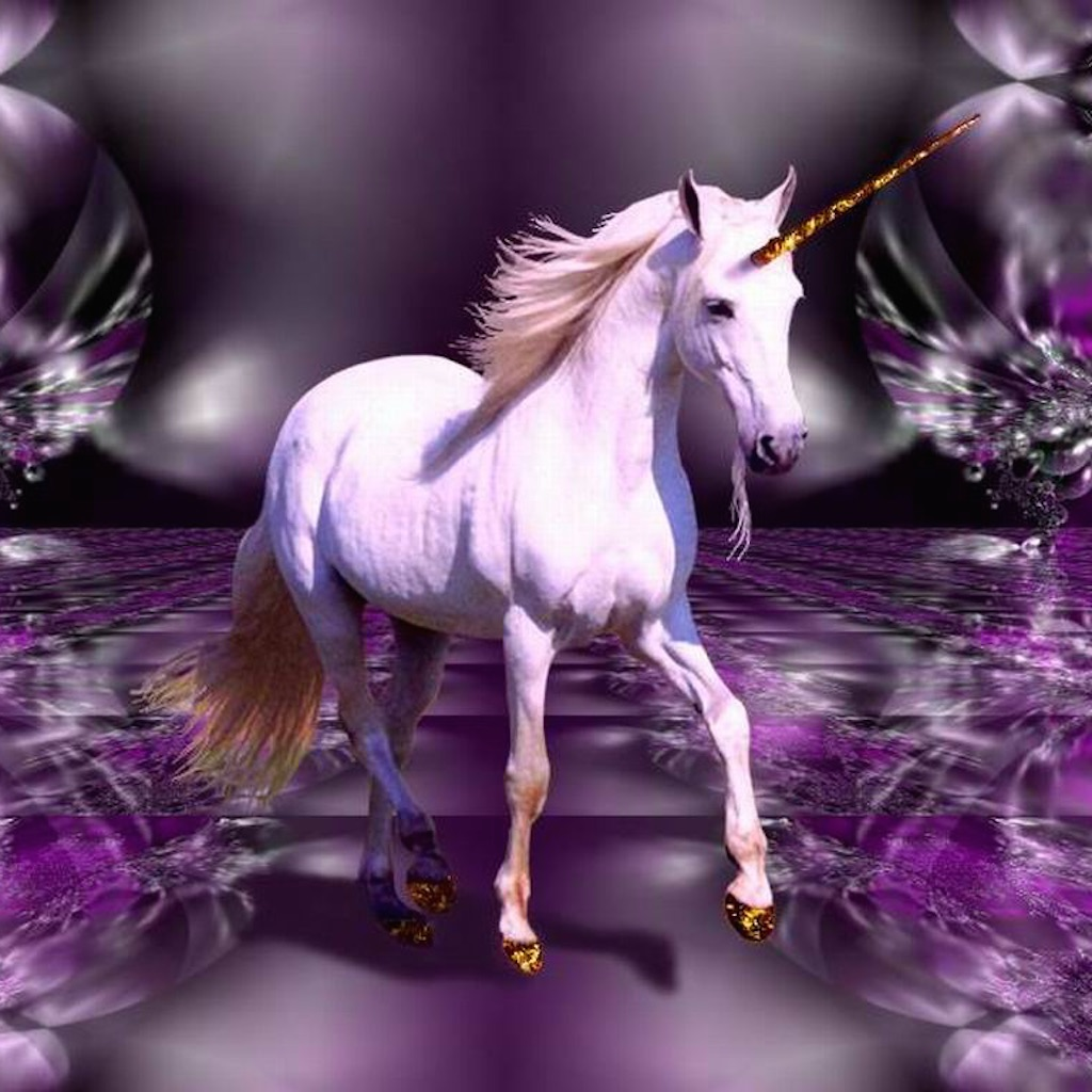 Unicorn Wallpapers Best Collection Of Unicorn Wallpapers