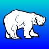 Polar Forsikring