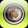 Fisheye Camera Lenses
