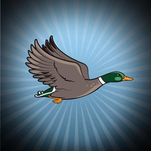 Flappy Space Duck iOS App