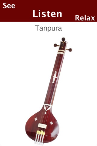 Indian Musical Instruments screenshot 2