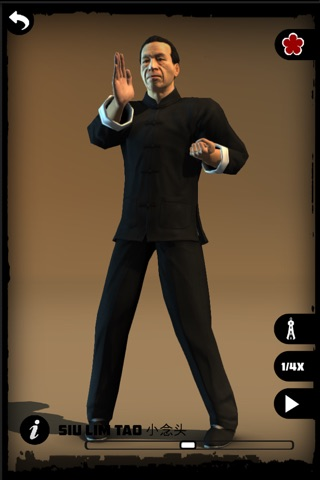 Ip Man Wing Chun Kung Fu : SLT screenshot 1