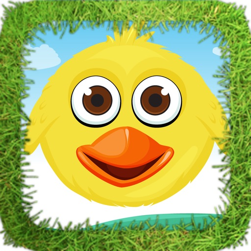 Huffy Bird Smasher Lite iOS App