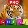 Guess The Animal Hidden Pro
