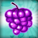 Fruit Blitz icon