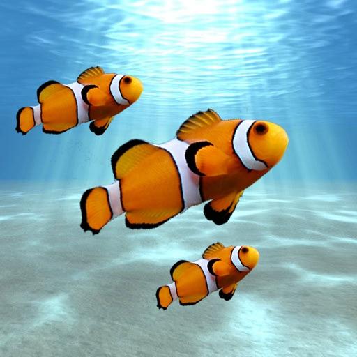 Aquarium: Tank Builder iOS App