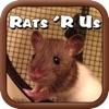 Rats R Us
