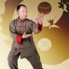 太極功夫賞學-太極拳,太極劍,太極扇,武術名家視頻講解示範