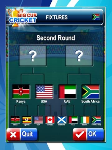 Big Cup Cricket-ipad-4