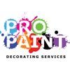 Pro Paint