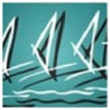 Windsurfing Association of Australia competition app