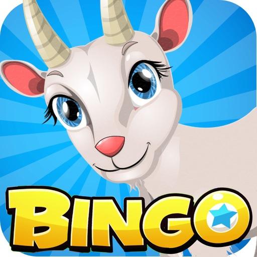 Pocket Bingo - Free Bingo Play iOS App