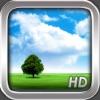 Tiempo HD