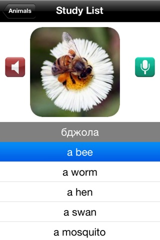 Learn Ukrainian screenshot 2