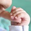 Geburt 101: Tutorium Know-How Führer und aktuellen Themen