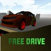 Free Drive Arena