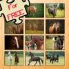 12馬動畫益智的免費遊戲!