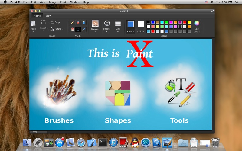 Paint X 1.1 Mac Torrent Crack Free Download2018-19