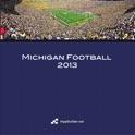 Michigan Football 2013 icon