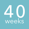 40 veckor - Graviditetskalender