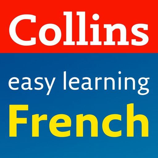 French Grammar and Practice