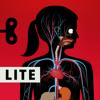 El Cuerpo Humano Lite