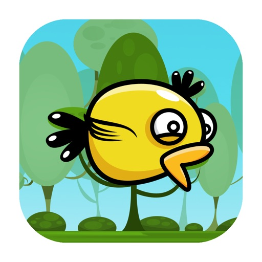 Duck Flyer Pro iOS App