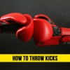 Boxing For Beginners - How to Throw Kicks kids boxing gloves