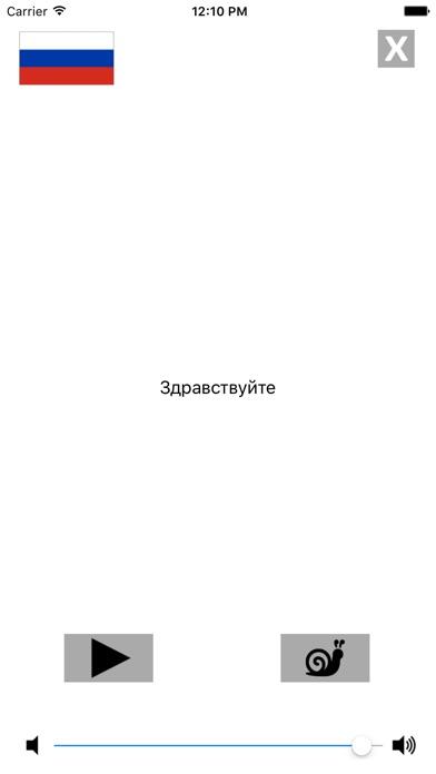 Русско / английский говорящий разговорник словарь - Multiphrasebook Скриншоты6