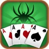 `Spider Solitaire