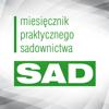 MPS-SAD