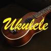 Ukulele Lessons For Beginner-Video lessons for beginner,learn how to play ukulelle. ubuntu beginner