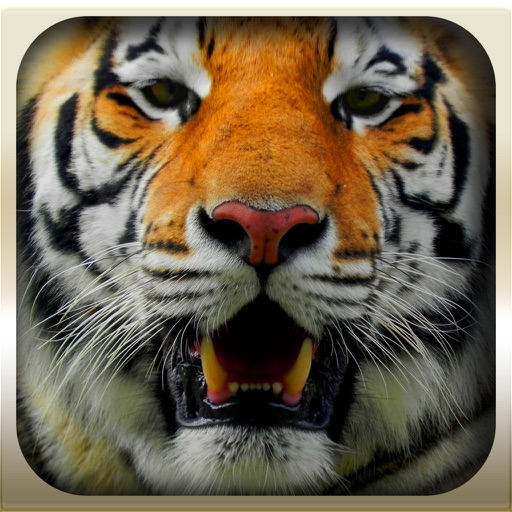 Epic Animal Hunter 3D Simulation 2016 : Wild Jungle iOS App