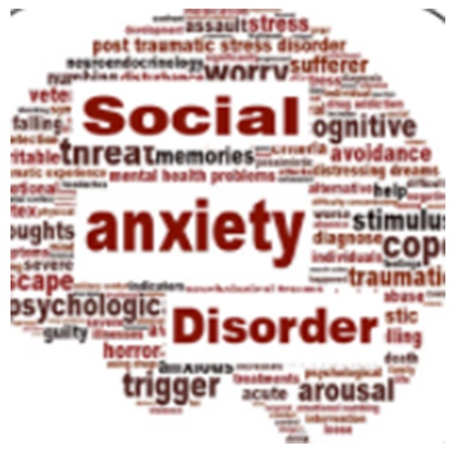 dating anxiety disorder I have anxiety about dating in i guess what i was trying to say was that i feel more comfortable with the idea of dating in that i feel so much of the.