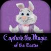 Magical Beliefs LLC - Catch the Easter Bunny  artwork