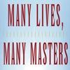 Быстрый Мудрость от многих жизней, много мастеров