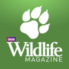 BBC Wildlife Magazine – from Attenborough to Darwin and great white sharks to polar bears