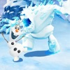 Protect snowman incarnation-extreme sports expert
