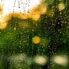 Relax Rain - Sound Sleep,Relax Melodies, Relaxing